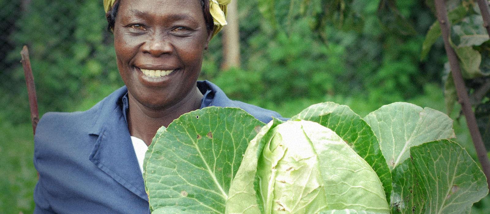 Uplifting Food Communities