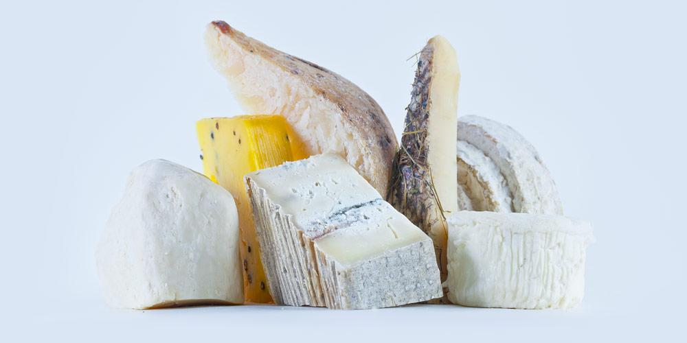 Cheesy Favorites